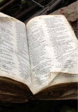 bible-in-tornado